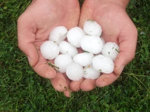 Public Adjuster NC hail damage